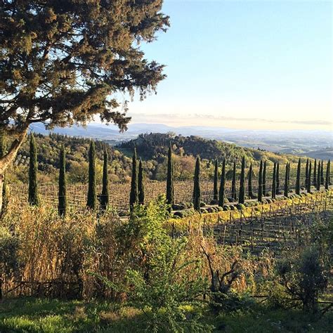 best wine in tuscany best wineries to visit in tuscany food wine