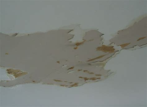 Painting Water Damaged Ceiling file ceiling sheetrock damaged by water so paint was