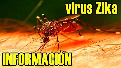 imagenes memes del zika 191 qu 233 es el virus zika origen sintomas cuidados