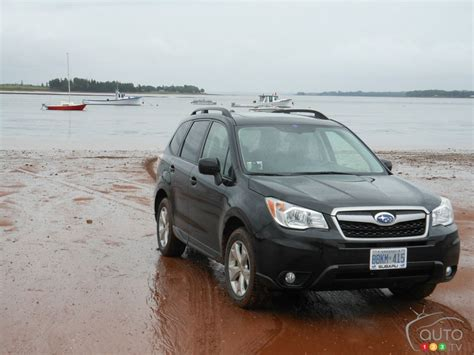 2010 subaru forester off road 100 2010 subaru forester off road 2016 subaru