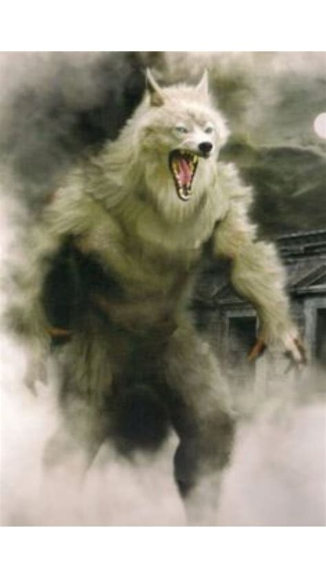 17 Best ideas about Furry Wolf on Pinterest | Anime wolf ... Awesome Pictures Of Werewolves