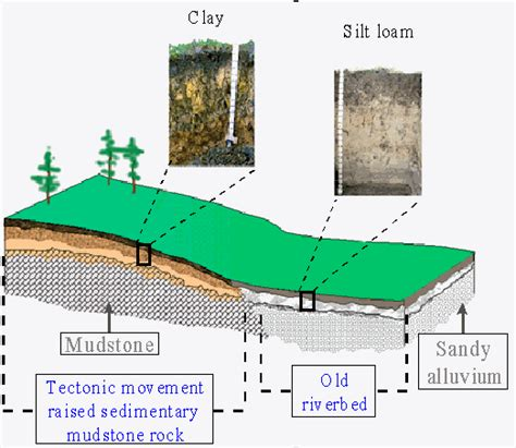 topographic diagram soil formation topography