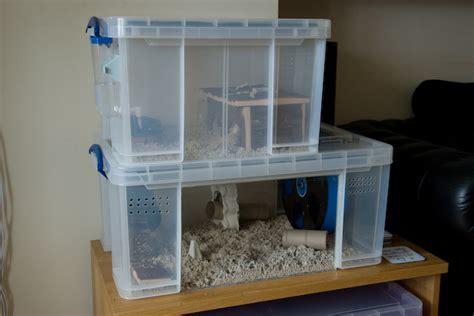 diy hamster cage diy bin cage aka chib towers hamster central