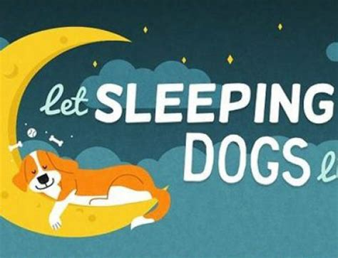 how much sleep do dogs need 3 amazing tricks for cleaning bulldog wrinkles bulldogology