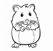 Hamster Clipart Black And White  ClipartFest