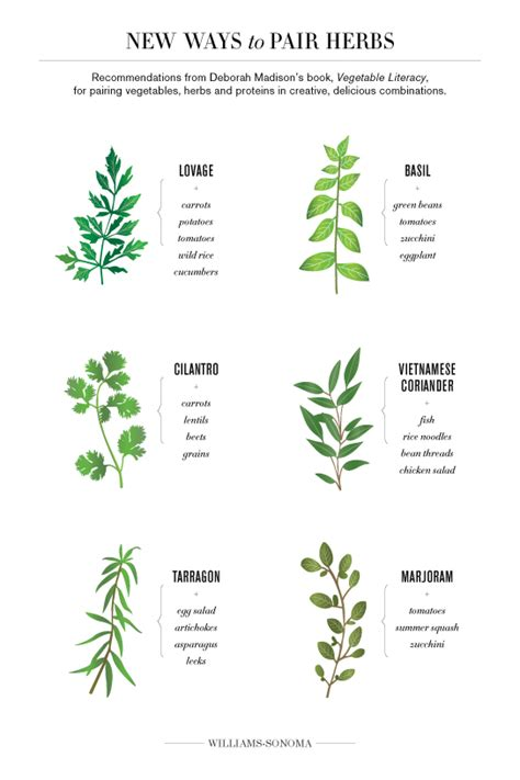 Deborah Madison's New Ways to Pair Herbs   Williams Sonoma