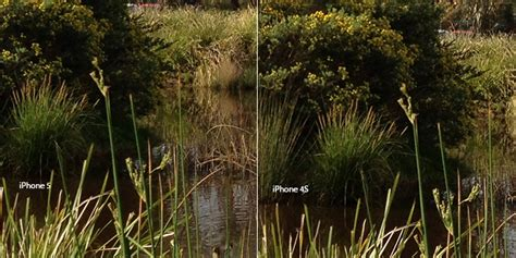 quality on iphone 5 iphone 4s vs iphone 5 image quality comparison