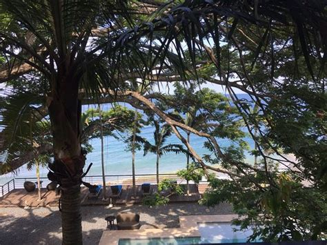 acacia resort and dive center acacia resort and dive center updated 2018 hotel reviews