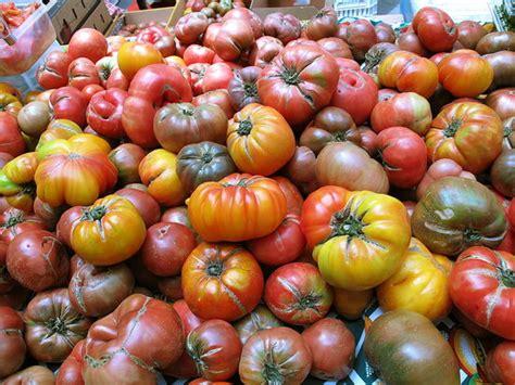 Green Multicolour Tomato T1310 1 how to prepare heirloom tomatoes popsugar food