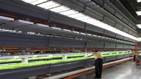 This Is The Future: 14 High Tech Farms Where Veggies Grow