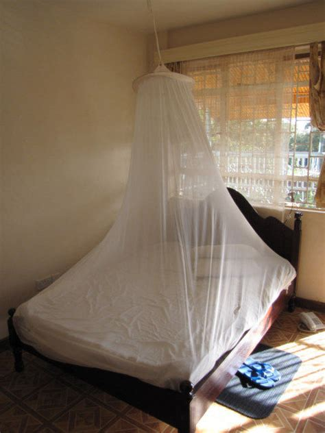 mosquito in my room mosquito net stops 20 bees in room