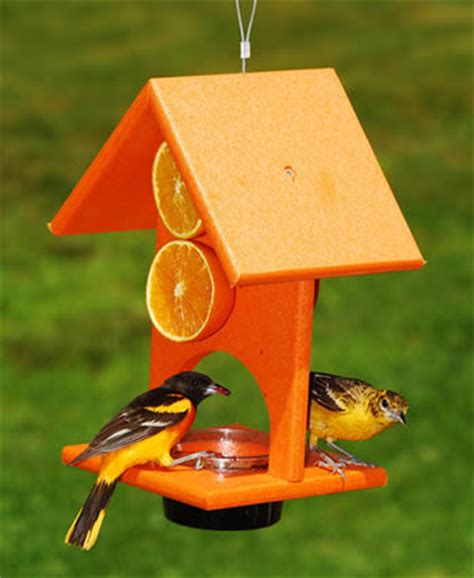 duncraft com orange oriole bird feeder