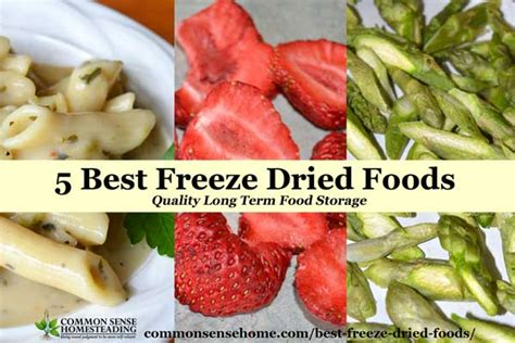 freeze dried food 5 best freeze dried foods quality term food storage