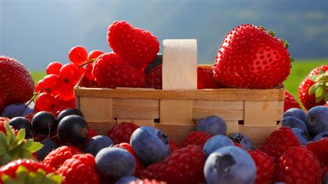 berries Full HD Wallpaper and Background   1920x1080   ID