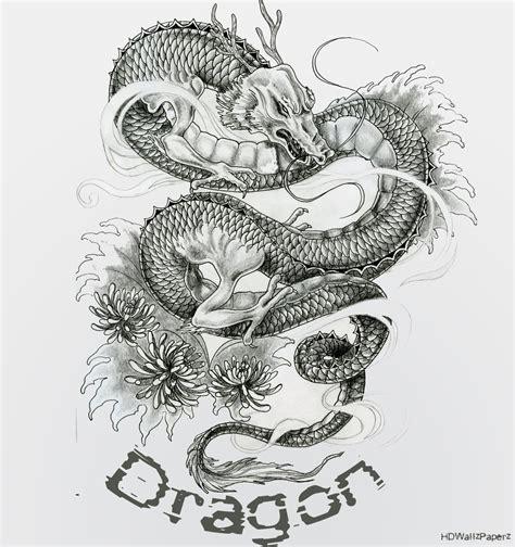 Dragon Tattoo Hd Images | dragon hd wallpapers