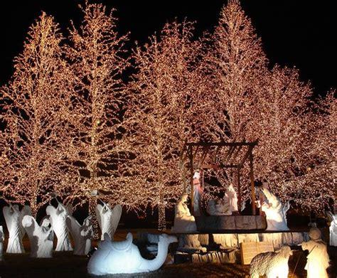 jellystone park nashville lights lights of at jellystone park in