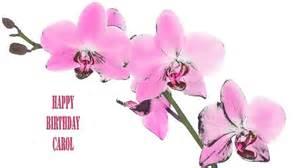 carol flowers amp flores happy birthday youtube