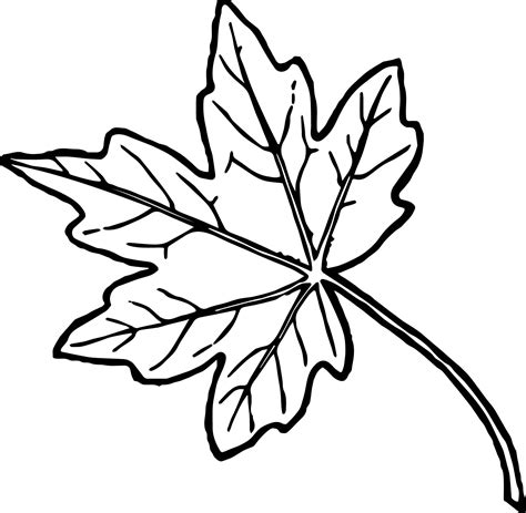 fall leaf coloring pages just autumn leaf coloring page wecoloringpage