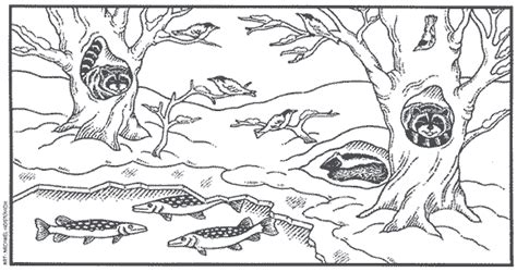 coloring pages animals in winter free coloring pages