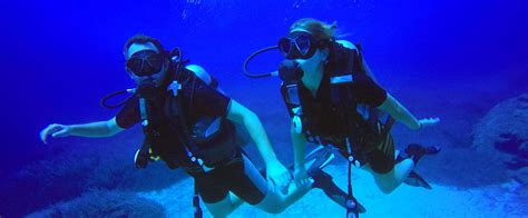 the dive the dive shop flint mi