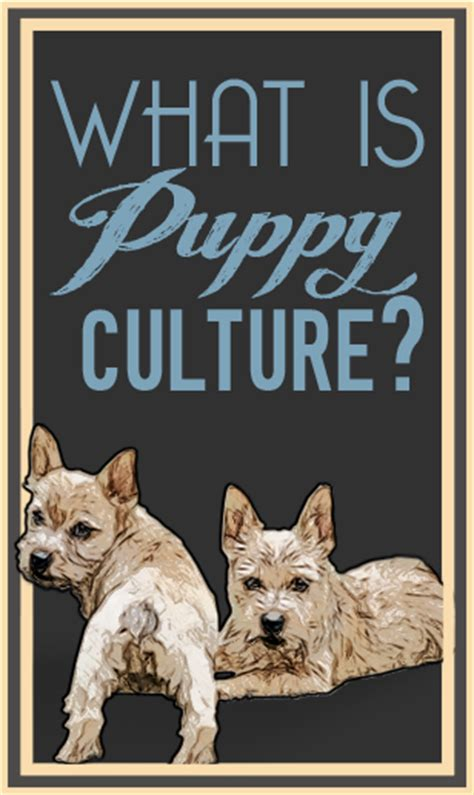 puppy culture what is puppy culture