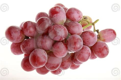 Sale Velly Anggur globe grapes from peru products argentina globe
