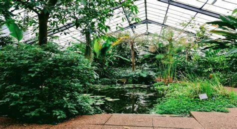 botanical gardens dundee dundee botanic gardens boxoftrix dundee botanic garden