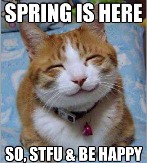 Spring Meme - happy funny cracks com