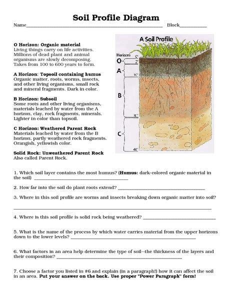 soil horizons diagram soil profile diagram for children www pixshark
