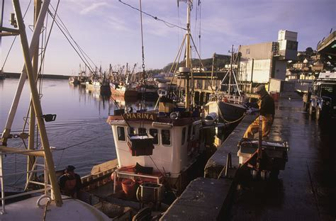 commercial fishing boat jobs uk meps support for fisheries fleet subsidies risks stock