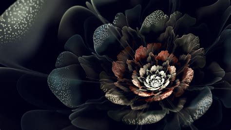 wallpaper black with flowers black roses hd wallpapers free downloads