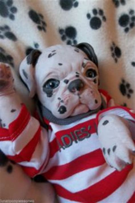 reborn pugs for sale reborn monkeys for sale on popscreen