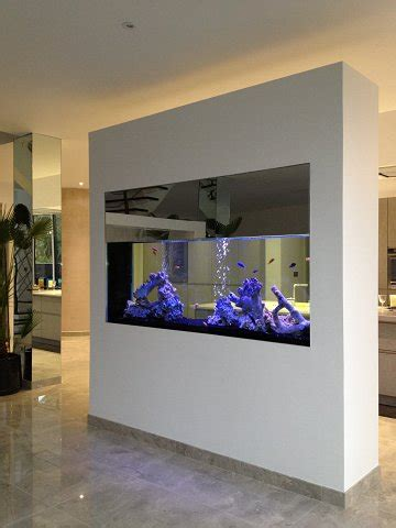Aquarium In Wand by In Wall Aquarium And Wall Aquarium Aquatic Gems Gallery