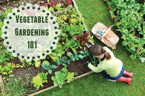 Gardening 101 Vegetable Getting Started Vegetable Gardening
