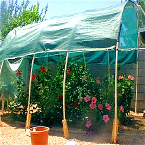 making a very low cost greenhouse out of straw hidden valley hibiscus build your own greenhouse