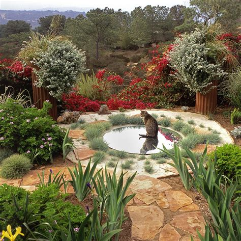 Garden Water Saver by The Illusion Of Water In The Low Water Garden And