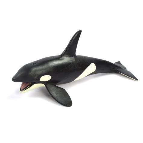 killer whale plastic compare prices on whale killer shopping buy low
