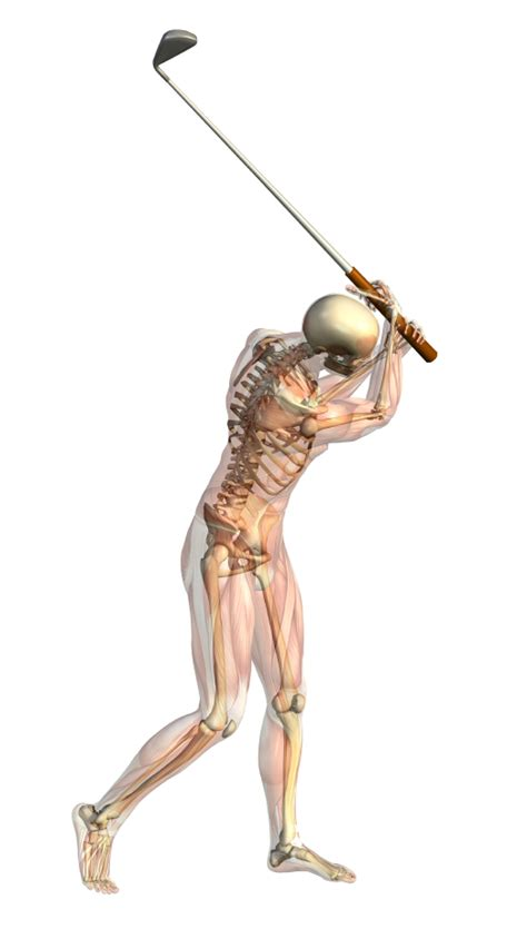 anatomy of a golf swing golf smart singapore physiotherapists provide