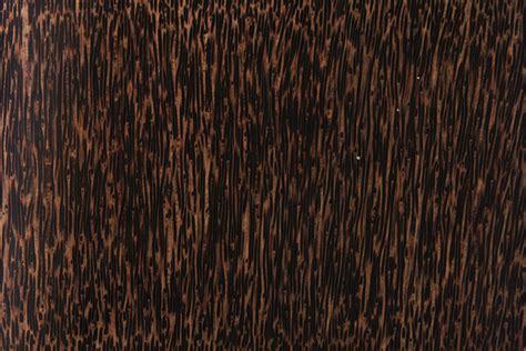palm woodwork frisasia fresh interior space