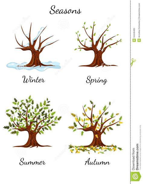illustration of season trees tree at four seasons illustration stock vector illustration of ornate isolated 34446485