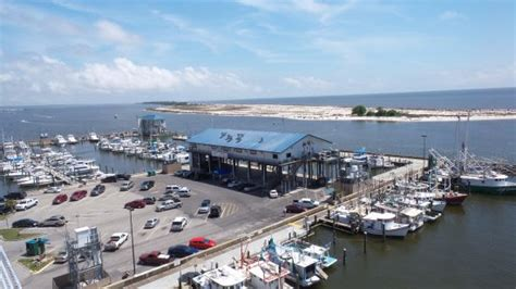 Harbor House Seafood by Mcelroy S Picture Of Mcelroy S Harbor House Seafood