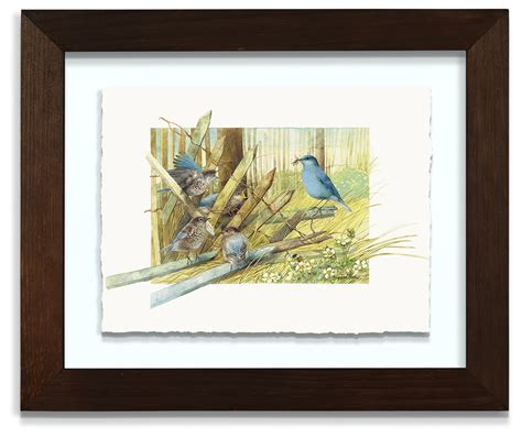 Deckenle Glas by Mountain Bluebird Family 11 Quot X 8 75 Quot Deckled Floating
