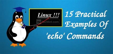 practical examples  echo command  linux
