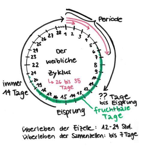 spirale entfernt wann schwanger weiblicher zyklus achtung liebe