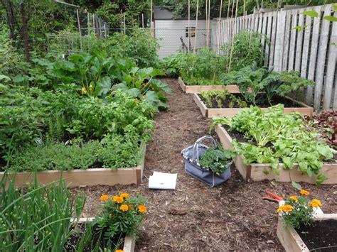 backyard farmer magazine spotlight on sustainability young urban farmers