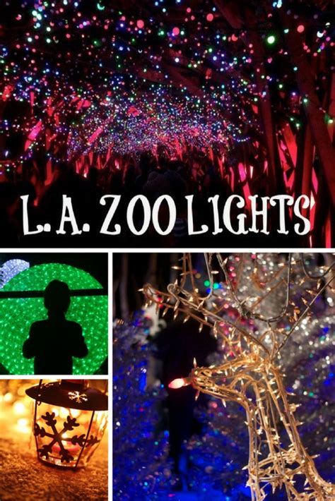 17 Best Ideas About Zoo Lights Tickets On Pinterest Zoo Zoo Lights Coupon