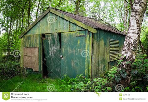 shed in the woods stock photo image 55705425
