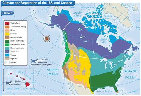 america vegetation map vegetation map of us and canada at maps