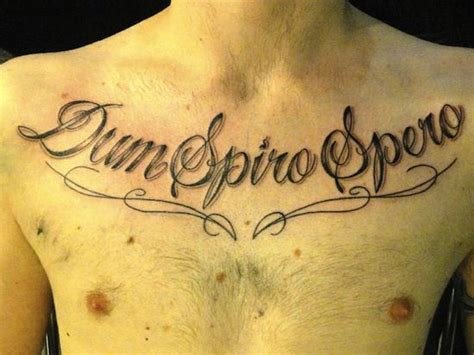 tattoo lettering vancouver 34 best unique tattoo lettering images on pinterest