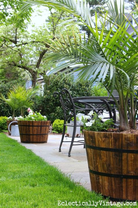 Patio Tree Planters by Patio Makeover Beautiful Outdoor Oasis